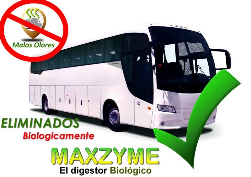 Maxzyme elimina los malos olores en ba os de buses maxzyme - Quitar olor desague bano ...